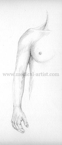 Medical Drawing...