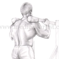 Strength training illustrated in pencil with coloured pencil enhancements