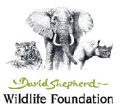 David Shepard Wildlife Foundation logo