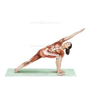 Revolved side angle yoga pose