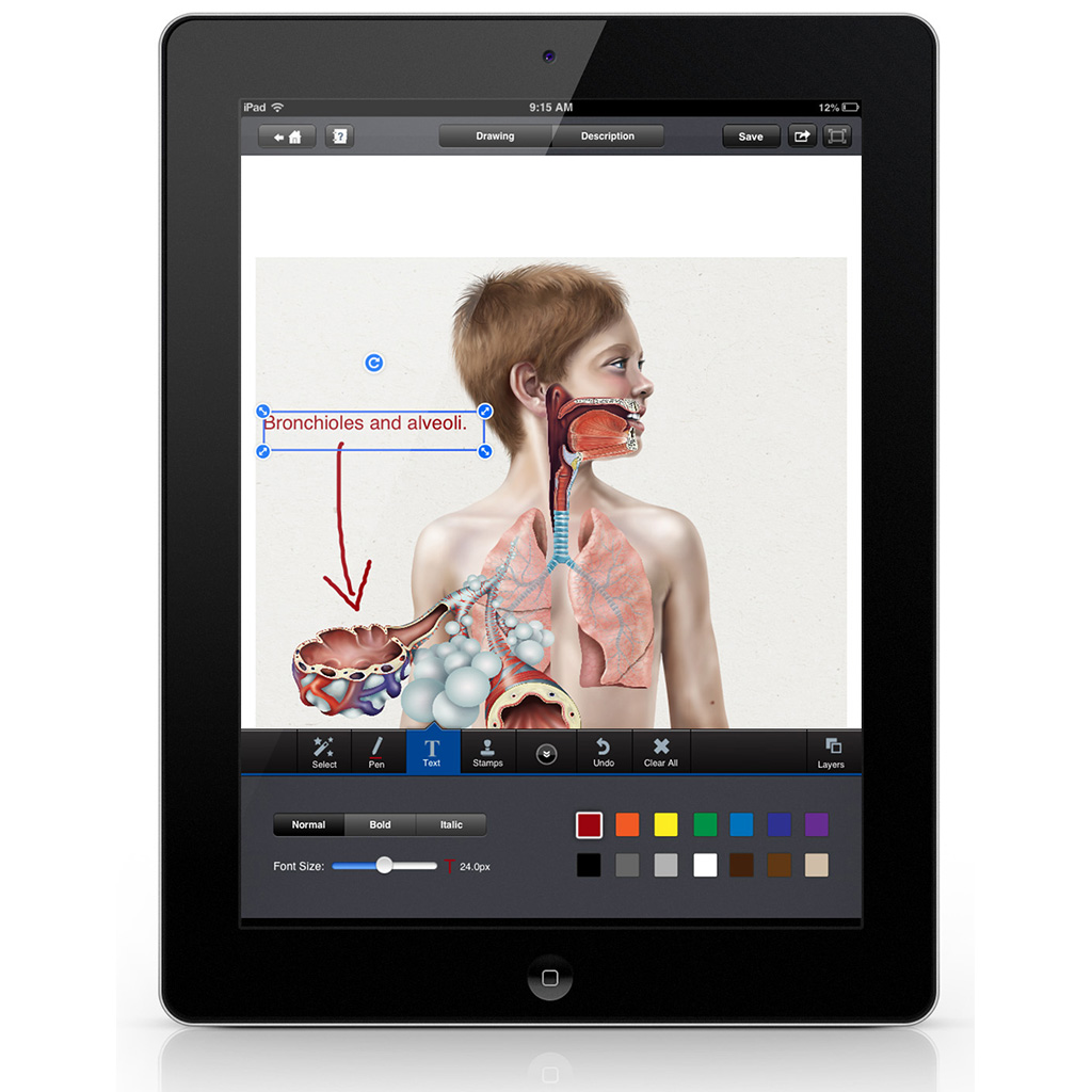 iMedical Illustrations for an App