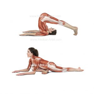 Yoga poses created in Photoshop