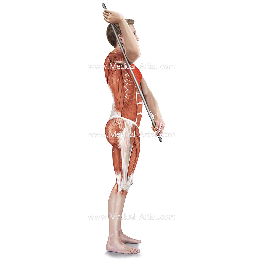 Medical illustration showing assisted subscapularis stretch