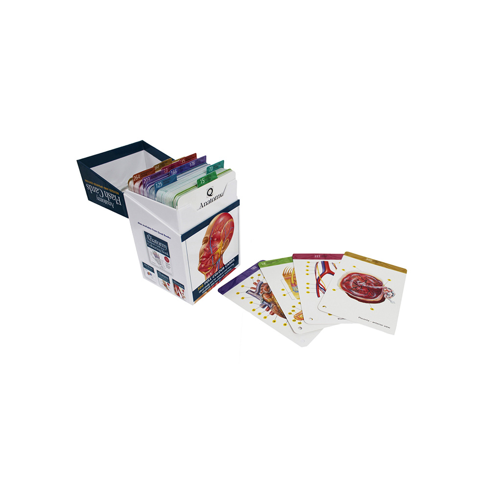 Flash cards in a box