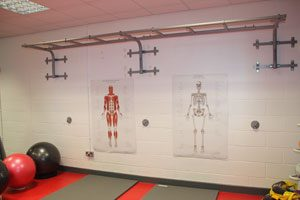 Skeletal and Muscle Anatomy Posters In Godalming Leisure Centre