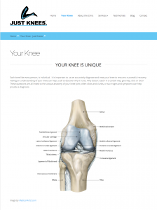Just Knees website sample