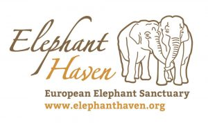 elephant-haven-europe-logo